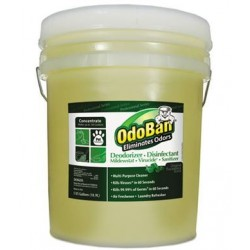 OdoBan Concentrated Odor Eliminator Eucalyptus 5 gal Pail