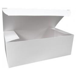 2729   8.88 x 4.88 x 3.17(9X5X3) White Lunch Box